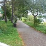 дорожка на территории пансионата Лесная сказка