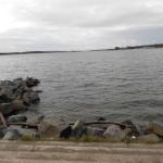 Каменистый берег пансионат Лесная сказка
