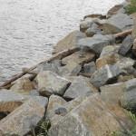 Камни на набережной Лесная сказка