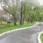 Лесная сказка (Бердск)