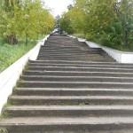 Лестница к набережной Лесная сказка