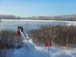 Озеро Лебединое