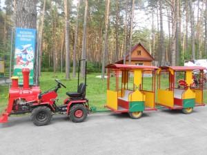 Паровозик для детей. Томская писаница.