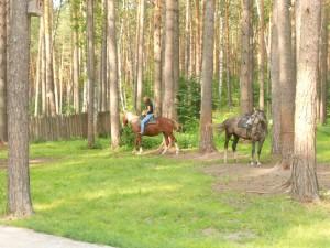 Катание на лошадях. Томская писаница.
