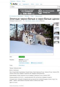Лживое объявление Светланы Федотовой