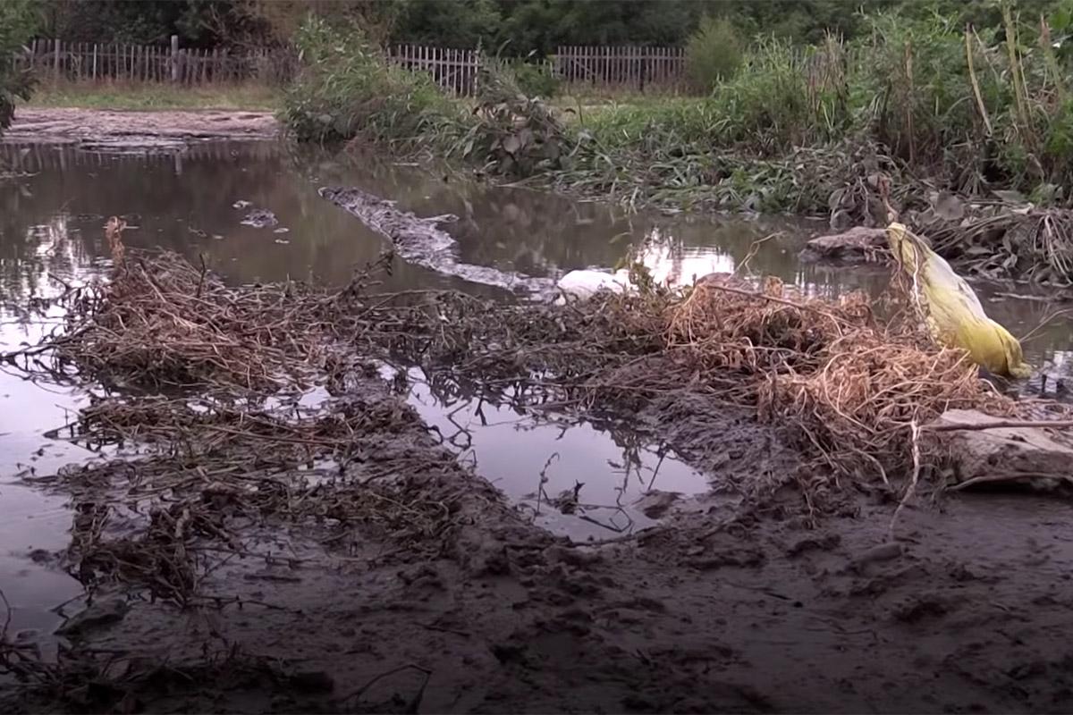 реки фекалий в Подлесном
